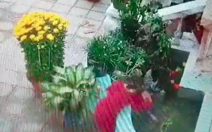 Để hai chị em chơi với nhau gần hòn non bộ, phụ huynh suýt nữa ân hận không kịp khi bé trai bất ngờ rơi xuống bể nước-2