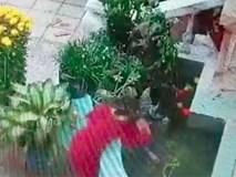 Để hai chị em chơi với nhau gần hòn non bộ, phụ huynh suýt nữa ân hận không kịp khi bé trai bất ngờ rơi xuống bể nước