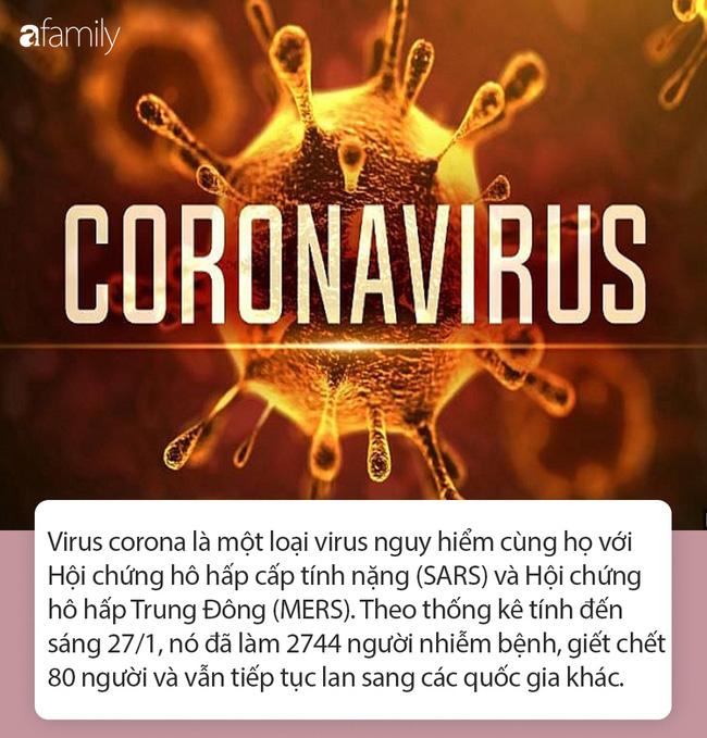 Tất tần tật thông tin nhanh về virus corona - cơn ác mộng làm xáo trộn Trung Quốc, đang khiến thế giới hoang mang từng ngày-1