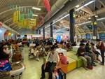 Hà Nội cho học sinh nghỉ đến ngày 9/2 phòng chống dịch corona-1