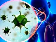 Trong khi cả thế giới đang lao đao vì virus corona thì Mỹ còn phải đối mặt với loại virus từng khiến 61.000 người chết và 45 triệu người bị bệnh