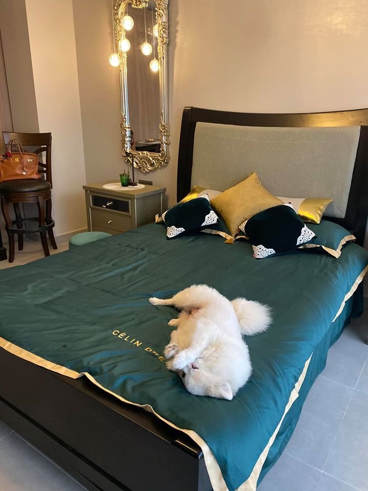 MC Minh Hà khoe phòng ngủ sang trọng như khách sạn-3