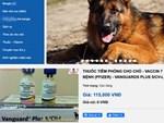 Vaccine Covid-19 của Nga ngăn ngừa mọi cấp độ lây nhiễm-2