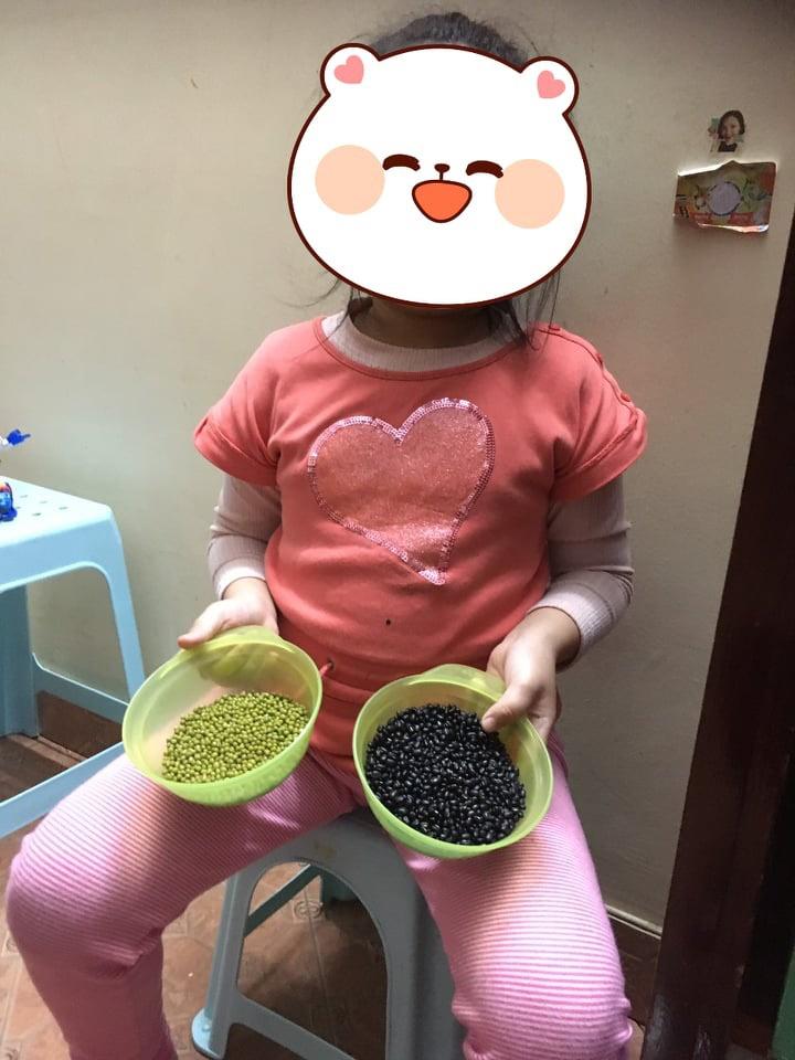 Con nghỉ học để tránh dịch corona, mẹ trẻ ở Hà Nội áp dụng cách giết thời gian cho con cực hay được mọi người hưởng ứng rần rần-2