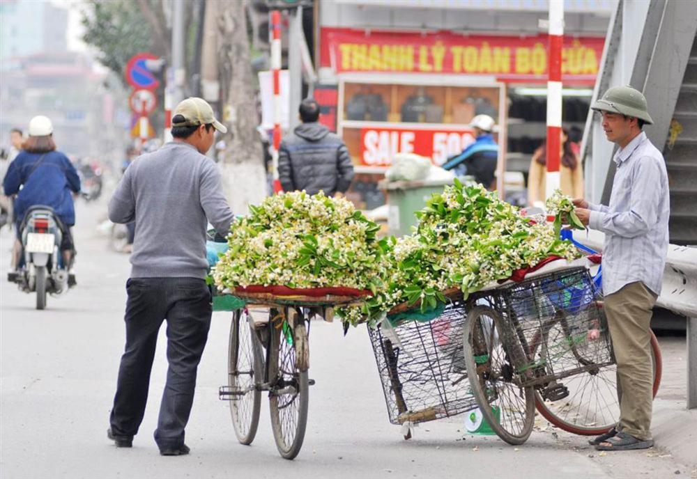 Đầu mùa gánh hoa bưởi xuống phố, giá hơn 300.000 đồng/kg vẫn đắt khách-1