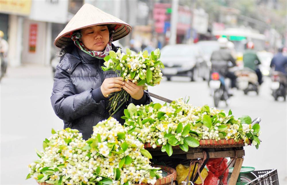 Đầu mùa gánh hoa bưởi xuống phố, giá hơn 300.000 đồng/kg vẫn đắt khách-5