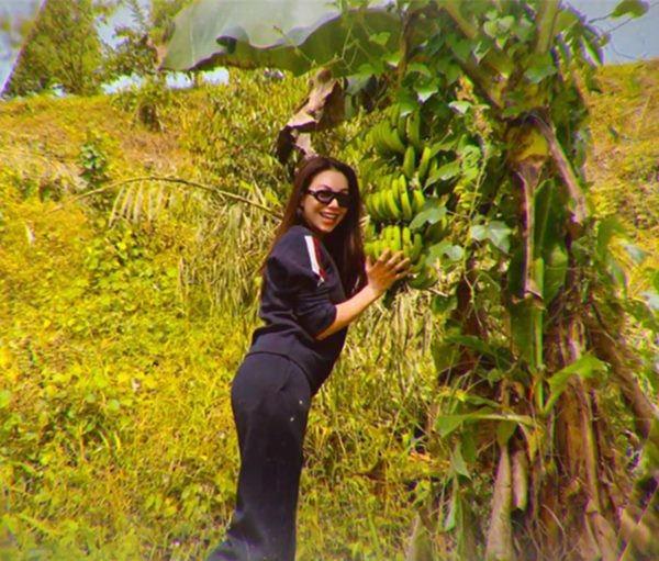 Mỹ nhân chán phố về quê: Lý Nhã Kỳ làm nông trường, Minh Hằng mua đất trồng cây, nuôi cá-8