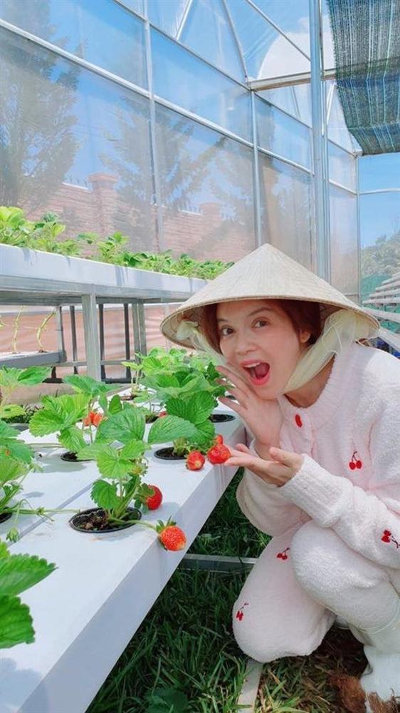 Mỹ nhân chán phố về quê: Lý Nhã Kỳ làm nông trường, Minh Hằng mua đất trồng cây, nuôi cá-12