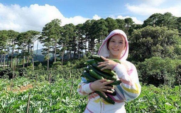 Mỹ nhân chán phố về quê: Lý Nhã Kỳ làm nông trường, Minh Hằng mua đất trồng cây, nuôi cá-13