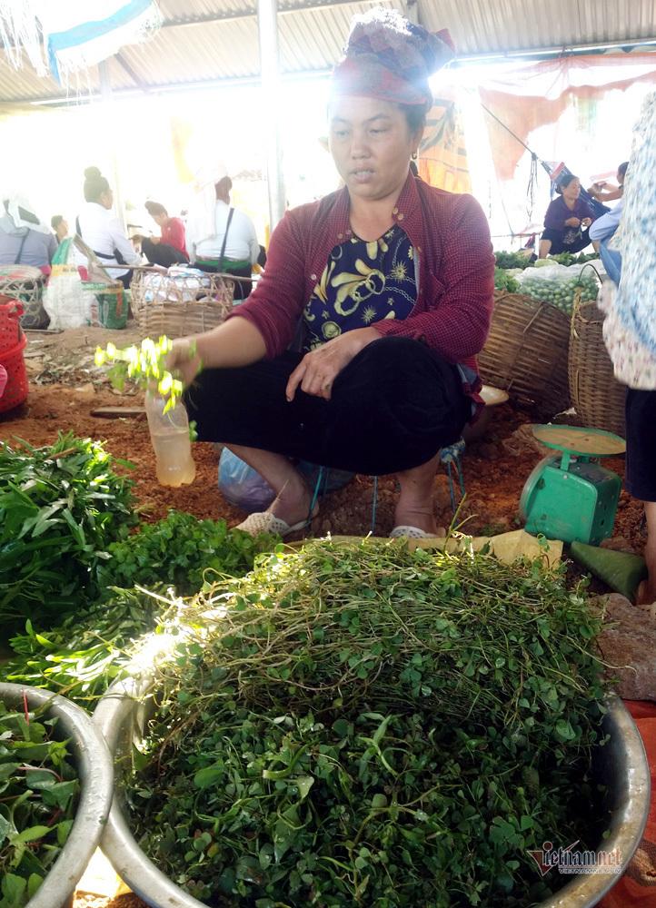 Khu chợ côn trùng bán đầy bọ xít, châu chấu... hiếm có Việt Nam-4
