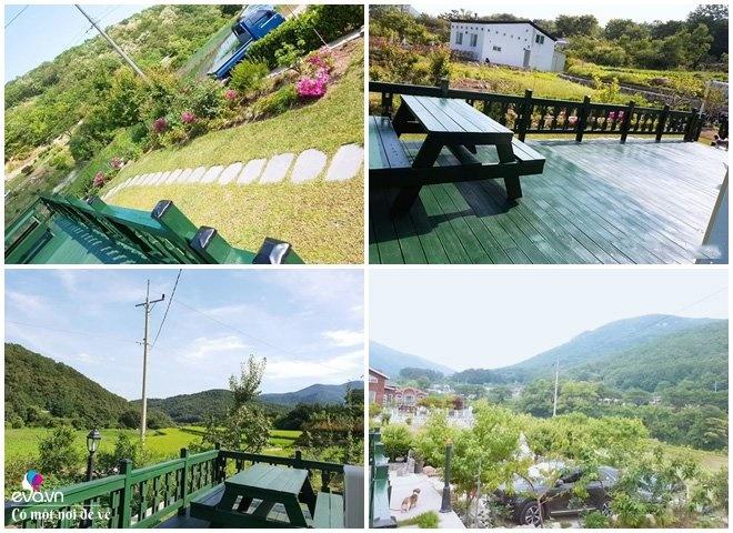 Thương vợ liệt nằm 1 chỗ, cụ ông Hàn Quốc xây cả khu vườn khiến con dâu Việt thán phục-3