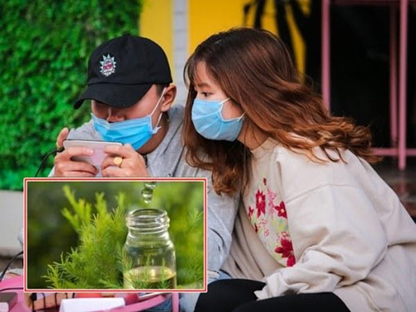Nhỏ 1 giọt tinh dầu tràm vào khẩu trang để phòng virus corona: Chuyên gia nói gì?-1