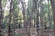 Phát hiện thi thể một người đàn ông trong rừng cao su nghi bị sát hại