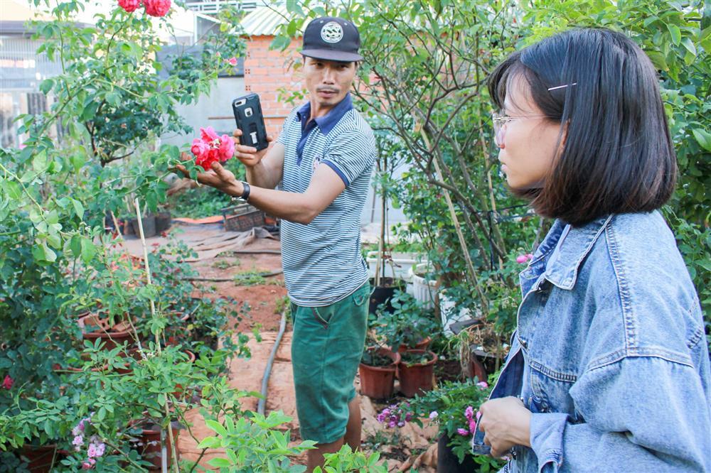 Vườn hồng 400 loài đẹp ngẩn ngơ của kỹ sư bỏ phố về núi-2