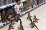 Con ăn vạ đòi mua đồ chơi, cách xử lý của ông bố khiến đứa trẻ lập tức