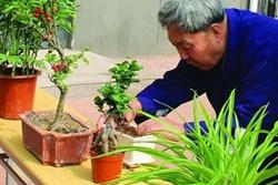 Người làm vườn tiết lộ bí quyết cứ trồng là cây xanh tốt, không sợ sâu bệnh hại