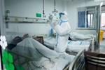 Thêm 105 người chết vì virus corona ở TQ, 2.048 ca nhiễm mới-3