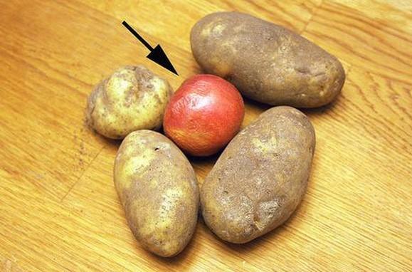 Thấy chồng bỏ quả táo vào trong rổ khoai tây, 1 tháng sau kiểm tra vợ tròn mắt vì bất ngờ-1