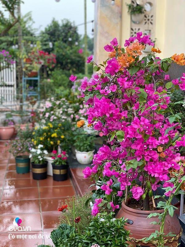 Chồng bỏ tiền mua lốp xe cũ, mẹ 8x trồng hoa, sau 2 năm thành mảnh vườn 200m2 tuyệt đẹp-5