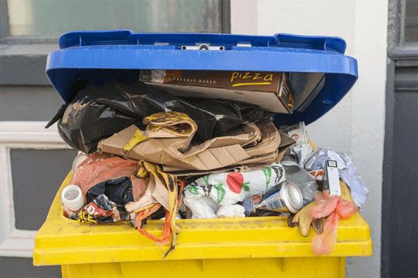 Cách đơn giản để thùng rác nhà bạn khỏi mùi khó chịu và sạch bóng côn trùng-3