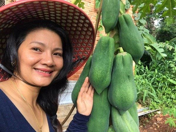 1 năm trốn phố về Bình Phước trồng rau, Kiều Trinh khoe vườn nhà trĩu quả-9