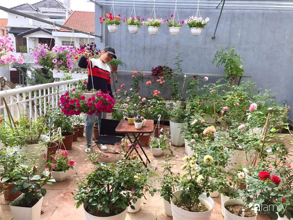 Mê hoa hồng, cô gái trẻ xứ Huế quyết tâm thức khuya dậy sớm tạo cả khu vườn hồng rực rỡ trên sân thượng-3