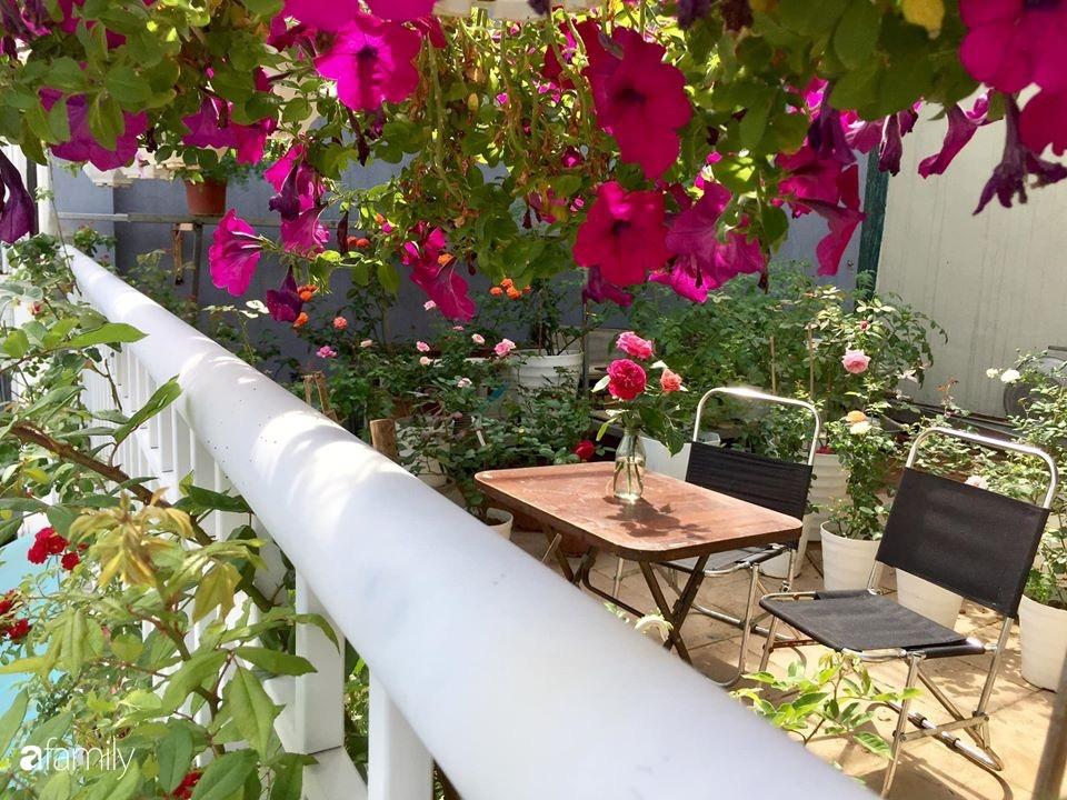 Mê hoa hồng, cô gái trẻ xứ Huế quyết tâm thức khuya dậy sớm tạo cả khu vườn hồng rực rỡ trên sân thượng-28