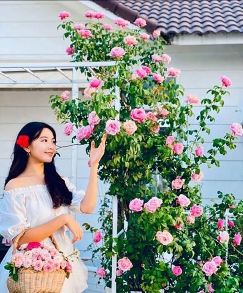Bà xã Quyền Linh khoe vườn hồng ngập sắc, mọi sự trầm trồ lại đổ vào 2 cô công chúa-5