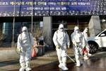 Hàn Quốc xác nhận ca tử vong thứ hai do nhiễm Covid-19, tổng số người nhiễm lên đến 209