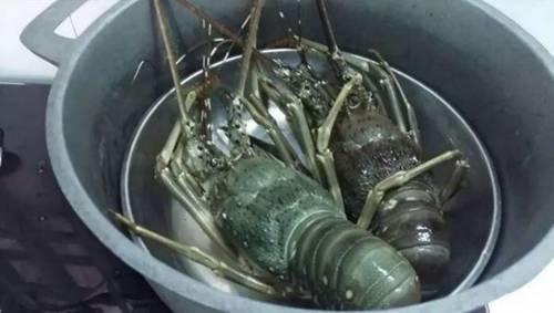 Cách chế biến tôm hùm nhiều món ngon hấp dẫn, dễ làm tại nhà-2