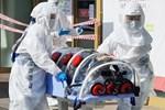 Hàn Quốc có 433 ca nhiễm virus corona, tăng 87 ca trong nửa ngày