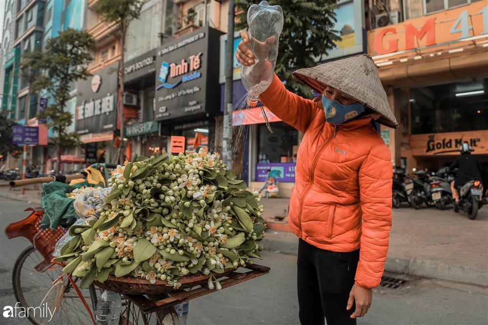 Chùm ảnh: Mùa hoa bưởi đã tỏa hương khắp đường phố Hà Nội, nhìn thấy lòng ai cũng xao xuyến, nhất định phải mang về mới thôi-11