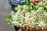 Vào mùa hoa bưởi thơm ngào ngạt, giá từ 200.000/kg và cách lựa hoa chuẩn chỉnh-8