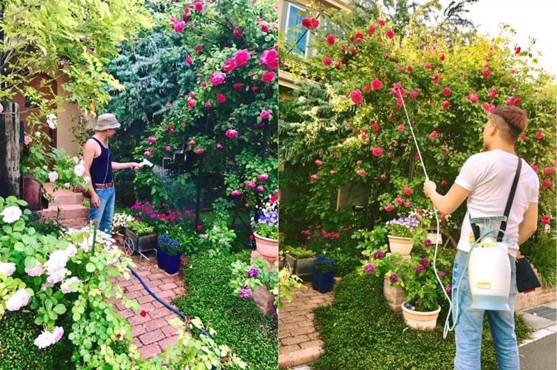 Say đắm ngắm vườn hồng đẹp tựa chốn thần tiên của người đàn ông Việt ở Nhật-4