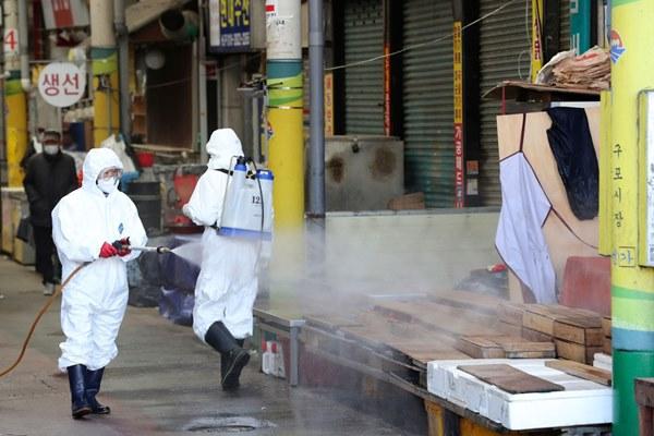 Nổi lên điểm nóng virus corona mới, chợ hải sản Vũ Hán được 'giải oan-3