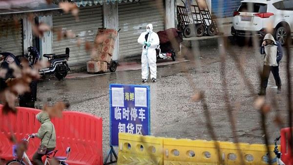Nổi lên điểm nóng virus corona mới, chợ hải sản Vũ Hán được 'giải oan-4