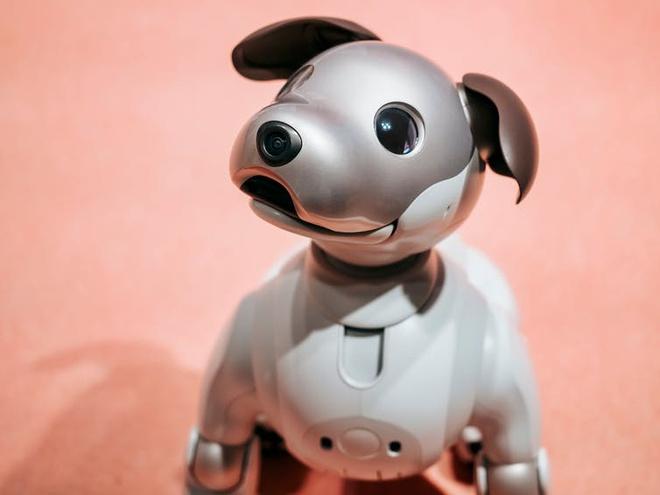 Robot tình dục sẽ là tri kỷ với con người trong tương lai?-3