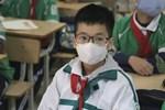 Du học sinh Việt tại tâm dịch Hàn Quốc: Nhiều người cấp tốc mua vé về nước, số khác ở lại vì sợ mang mầm bệnh về Việt Nam-9
