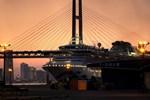 Nhật Bản tìm được 23 hành khách rời du thuyền Diamond Princess mà chưa được xét nghiệm kĩ virus corona do lỗi
