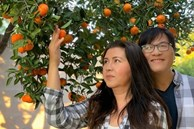 Làm nông dân bất đắc dĩ, vợ chồng Phương Thảo - Ngọc Lễ vẫn chăm được vườn cây trĩu quả ở Mỹ