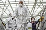 Hàn Quốc thêm 115 ca nhiễm virus corona, tổng cộng 1.261 ca