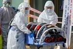 Hàn Quốc thêm 256 ca nhiễm virus corona, tổng số 2.022-2
