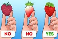 Mẹo nhận biết những loại thức ăn kém chất lượng cực dễ dàng