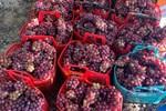 Nho đỏ Ninh Thuận 50.000 đồng/kg tràn chợ mạng: Tiểu thương chỉ cách nhận biết