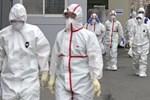 Thêm 315 người nhiễm virus corona ở Hàn Quốc, tổng cộng 2.337 ca