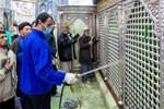 Video: Người dân Iran tập trung liếm đền thờ giữa lúc dịch bệnh virus corona bùng phát-5