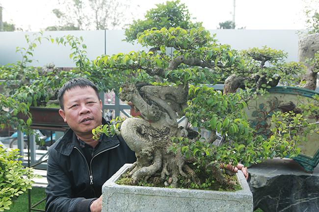 Đầu tư 10 tỷ chơi cây cảnh, đại gia Hà Nội có khối tài sản siêu khủng-14