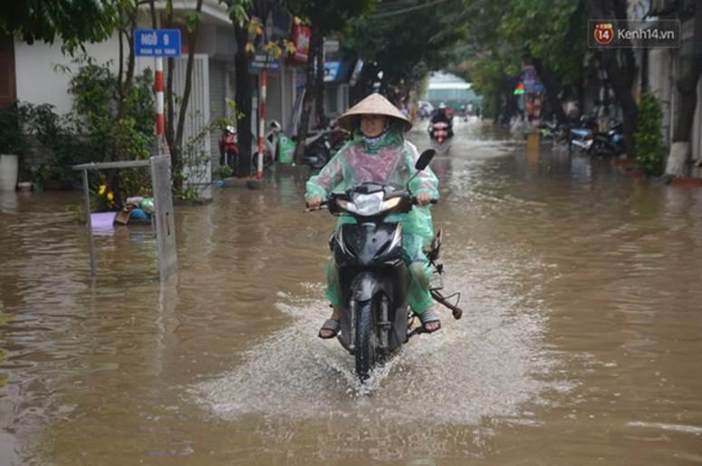Hà Nội: Nhiều tuyến phố ngập nghiêm trọng, cây xanh bật gốc đổ ngang đường sau cơn mưa như trút nước-6