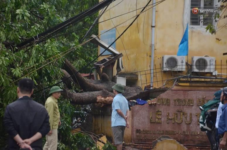 Hà Nội: Nhiều tuyến phố ngập nghiêm trọng, cây xanh bật gốc đổ ngang đường sau cơn mưa như trút nước-16