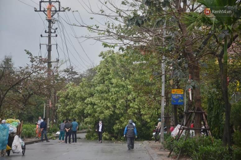 Hà Nội: Nhiều tuyến phố ngập nghiêm trọng, cây xanh bật gốc đổ ngang đường sau cơn mưa như trút nước-17